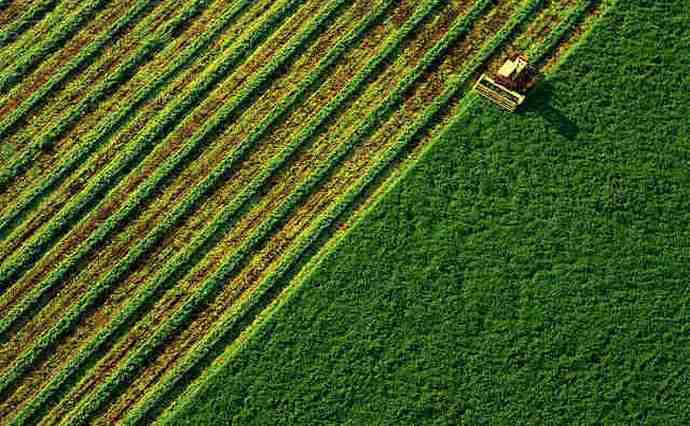 Лише 16% власників паїв мають намір продати землю