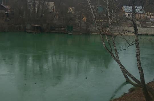 Екологічна катастрофа у Горенці – вода в озерах стала зеленою