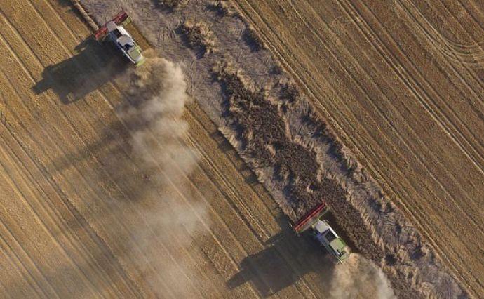 Уряд створив Фонд гарантування кредитів на купівлю землі