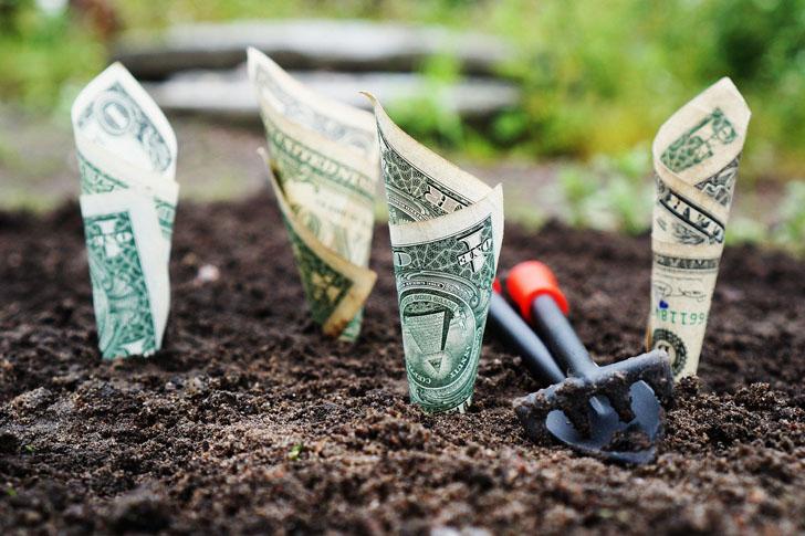 Визначилися з пріоритетами щодо державної підтримки сільгоспвиробників